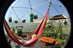 Geodesic dome for growing over winter