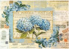 Rice Paper for Decoupage Decopatch Scrapbook Craft Sheet Vintage Blue Flowers