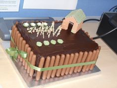 Allotment cake I made for a friend's retirement present
