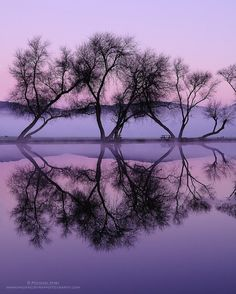 Twilight Reflections Photo by Michael Ryan