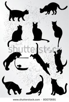 A collection of black cats.