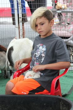 Kingston Rossdale - Gwen Stefani's Kids Play at a Petting Zoo