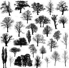 Winter tree silhouette collection stock vector art 6200329 - iStock