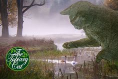A Misty Day by the River, the Topiary Cat Observes Two Swans. Cat Garden, Garden Art, Garden Design, Topiary Plants, Topiary Garden, Parks, Giant Cat, Misty Day, Photo Restoration
