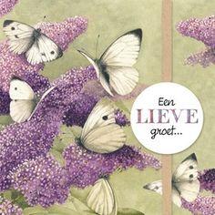 """Sprekende kaart van Marjolein Bastin """"Een lieve groet.."""" #Hallmark #HallmarkNL #MarjoleinBastin"""