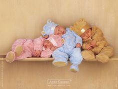 Pastel Teddy Babies Sleeping