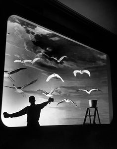 A staff member of the Museum of Natural History cleaning the glass case of an exhibit by Jack Birns