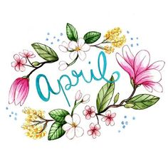 (via brookeweeberillustration: April Flowers. | ❀ Spring Sweetness ❀ | Pin…)