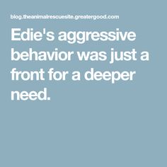 Edie's aggressive behavior was just a front for a deeper need. Paws Rescue, Dog Stories, Happy Endings, Shelter Dogs, Hug, Behavior, Road Trip, In This Moment, Simple