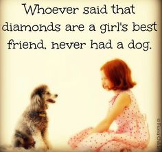 (Especially a poodle! Diamond Are A Girls Best Friend, Mans Best Friend, Best Friends, Friends Family, I Love Dogs, Puppy Love, Cute Dogs, Puppy Pics, Weimaraner