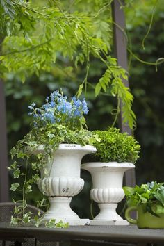 Design Philippe de Stefano for botanic