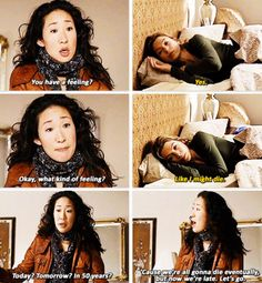 Meredith is the fandom. Cristina is ... well Cristina.