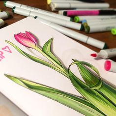 Весь букет я не осилю пока #markers #leuchtturm1917 #sketch #copic #sketchbook #tulips #spring_flowers_2018 #bandakova_sketch