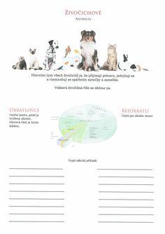 Živočichové (Obratlovci a Bezobratlí)