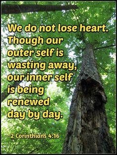 """We do not lose heart..."" ~2 Corinthians 4:16"