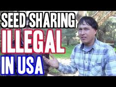 John from http://www.growingyourgreens.com/ breaks the news that seed sharing in the USA has been deemed not legal and certain organizations are prohibited f...