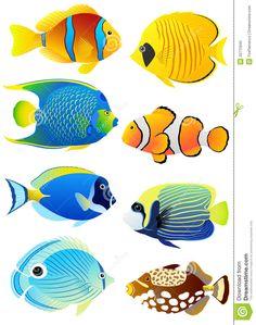 Peixes tropicais. Ilustração: Fireflamenco.