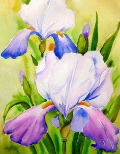 IRIS in Watercolor -- Meltem Kilic
