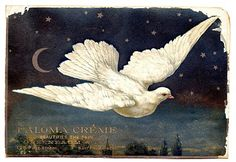 Vintage Clip Art - Superb Dove with Moon & Stars - The Graphics Fairy