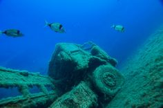 At the Zenobia wreck...there are 4 of these trucks at 35 meters deep. Impressive