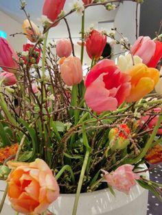 Springtime Spring Time, Architecture, Plants, Flora, Plant, Architecture Illustrations, Planting