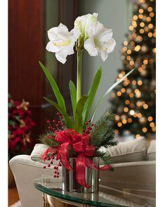 Amaryllis Silk Flower Arrangement - White