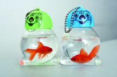 Live fish being sold as keychains