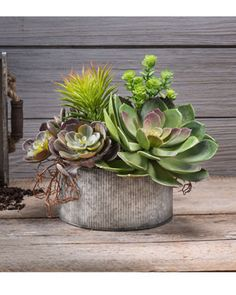 Succulent Obsession Artificial Foliage Planter at Petals Office Scapes Direct Hanging Succulents, Artificial Succulents, Succulents In Containers, Cacti And Succulents, Cactus Plants, Succulent Centerpieces, Succulent Arrangements, Succulent Terrarium, Echeveria