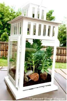 Blogger Nikki realized that Ikea's Borrby candle lantern can easily be repurposed into a small terrarium—which can also double as a rustic outdoor centerpiece.  Get the tutorial at Fluorescent Beige.