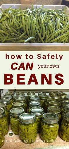 Preserve your own beans this year.. Here is how to safely home can your own beans and vegetables.