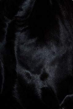 Black   黒   Kuro   Nero   Noir   Preto   Ebony   Sable   Onyx   Charcoal   Obsidian   Jet   Raven   Color   Texture   Pattern  