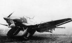 JU-87 w/ nice camo