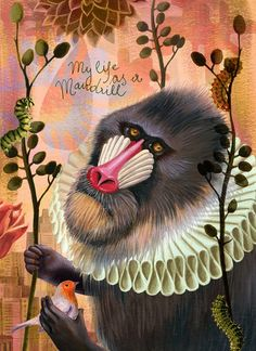 my life as a mandril - alice wellinger