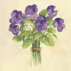 Violets, Watercolor