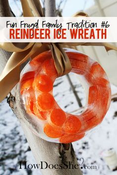 Fun Frugal Family Tradition - Make a Reindeer Ice Wreath! howdoesshe.com