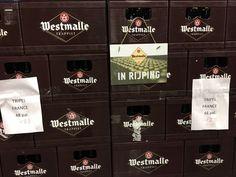 Dagje Westmalle Beer, Seeds