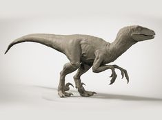 VELOCIRAPTOR (UTAHRAPTOR) 1/14 3d printed Jurassic World, Jurassic Park Series, Prehistoric Creatures, Mythical Creatures, Animal Sketches, Animal Drawings, Dinosaur Art, Raptor Dinosaur, Extinct Animals