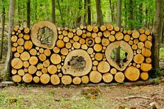 Free photo: Wood, Holzstapel, Stacked Up - Free Image on Pixabay . Stacking Firewood, Garden Wall Designs, Living Fence, Wood Shed, Garden Structures, Wood Storage, Land Art, Garden Projects, Amazing Gardens