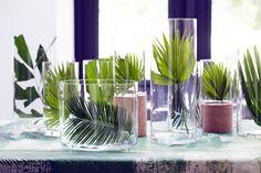 Die Blätter von Sagopalmfarn und Livingstonpalme sind dekorativ in Glasvasen
