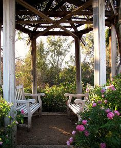 Columns, benches and roses