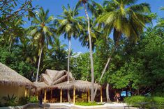 Resort of Biyadhoo