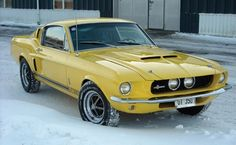 1967 Ford Shelby Mustang GT350 - we might help you to fulfill your dreams: http://www.1worldand1vision.com