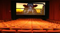 """This is the film that environmental organizations don't want you to see.  """"COWSPIRACY: The Sustainability Secret"""" is a groundbreaking feature-length environmental documentary following an intrepid filmmaker as he uncovers the most destructive industry facing the planet today, and investigates why the world's leading environmental organizations are too afraid to talk about it."""