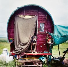 Wandering ways: Looking like something out of a history book this is traditional Gypsy caravan is home to a proud new age traveller