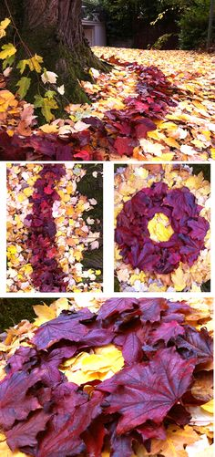 Land Art by Andy Goldsworthy. Great idea for art therapy or creating earthy mandalas.