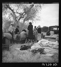 1935 - Penniless refugees from dust bowl. Twenty-two in family, thirty-nine evictions, now encamped near Bakersfield without shelter, without water and looking for work. - Dorothea Lange