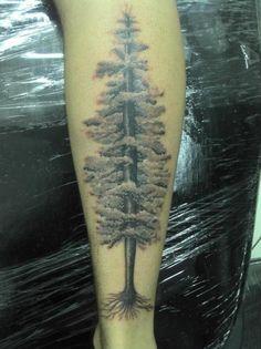 redwood tattoo - Google Search