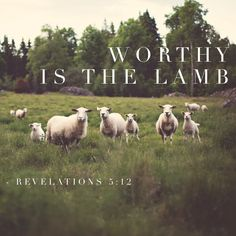 Worthy is the Lamb,