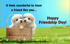 Happy Friendship day quotes. It feels wonderful to have a friend like you. Happy Friendship day my dear friend.