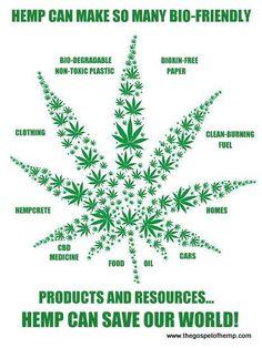 Hemp Can Save Our World Medical Cannabis, Cannabis Oil, Hemp Recipe, Treating Fibromyalgia, Healing Herbs, Mother Earth, Flower Power, Feel Good, Medicine